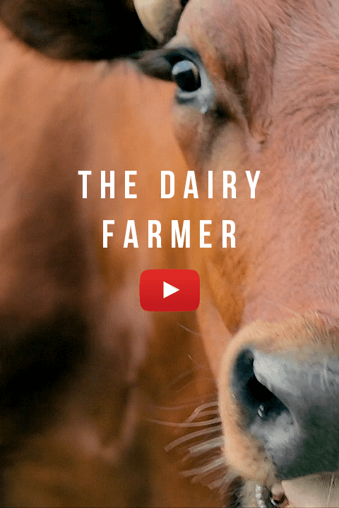The Dairy Farmer TUFF Phones Video